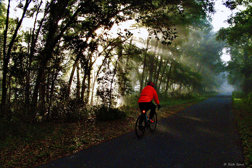 sunrise nature bicycle trail lumixzs50 outdoors florida trees woods