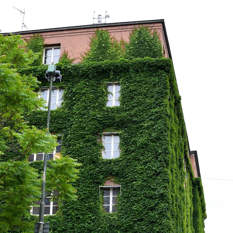 Växtbyggnad i Malmö