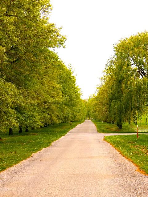 The Long Long Road