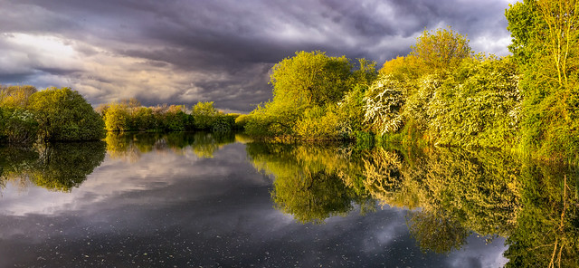 Spring Evening Reflection
