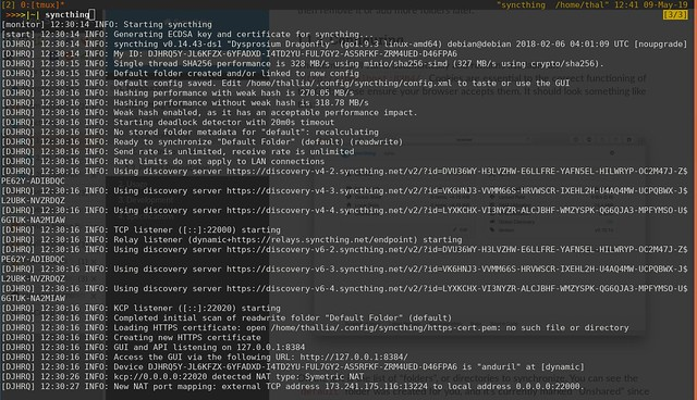 syncthing-terminal-output