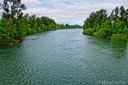 willametteriver eugene oregon knickerbockerbicyclebridge river trees sky clouds water waterway