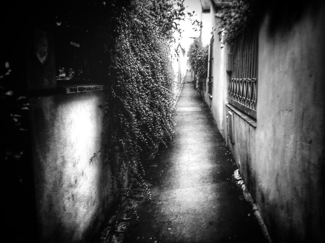 Felt loneliness in the back alley