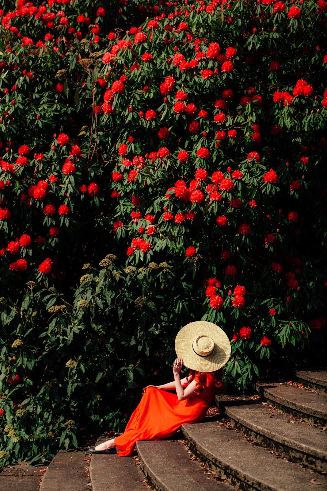 red dress-25