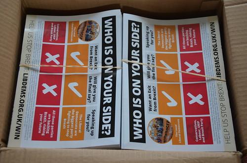 Lib Dem European election leaflets May 19