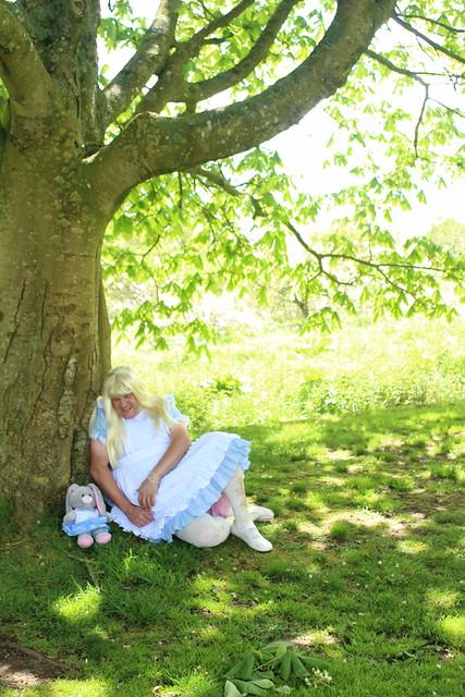 alice under the tree
