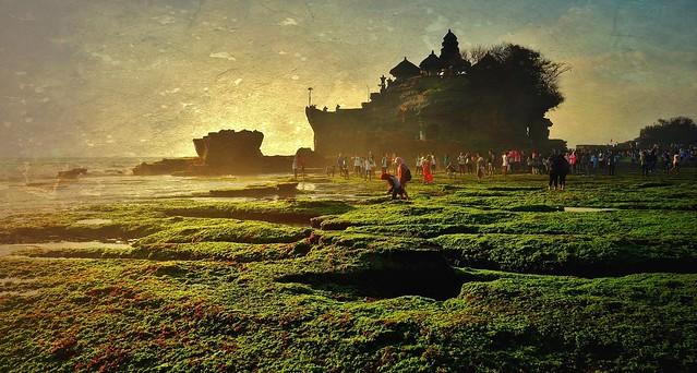INDONESIEN, Bali -  Rund um den Meerestempel Pura Tanah Lot , 18187/11466