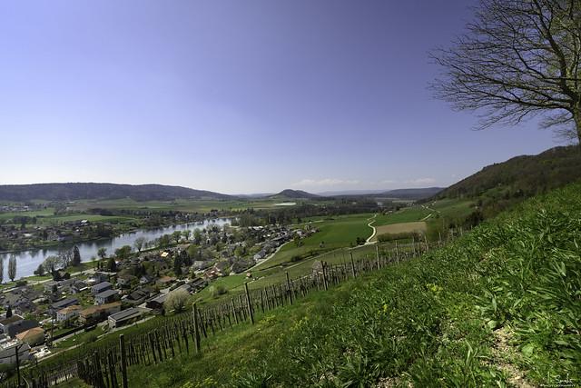 Rhein view from Hohenklingenroad - Stein am Rhein - Schaffhausen - Switzerland