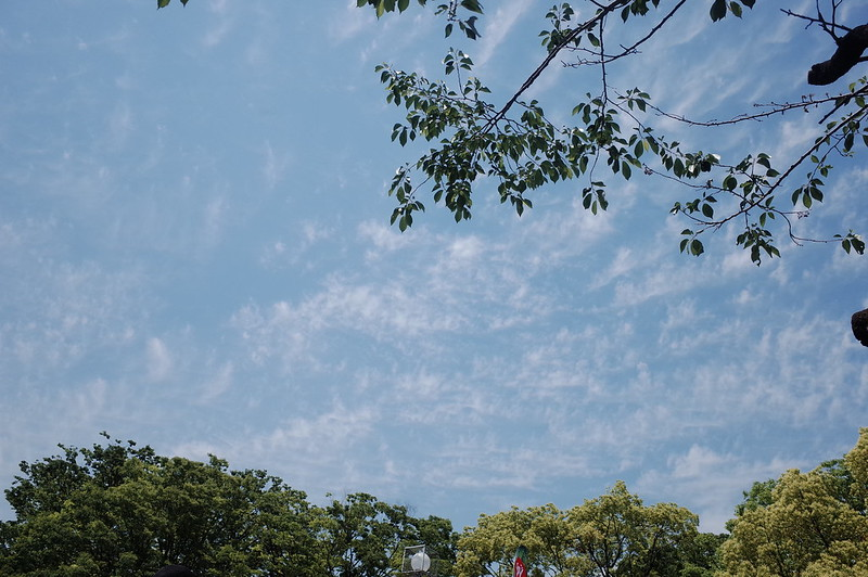 渋谷代々木公園タイフェスティバル2019の空