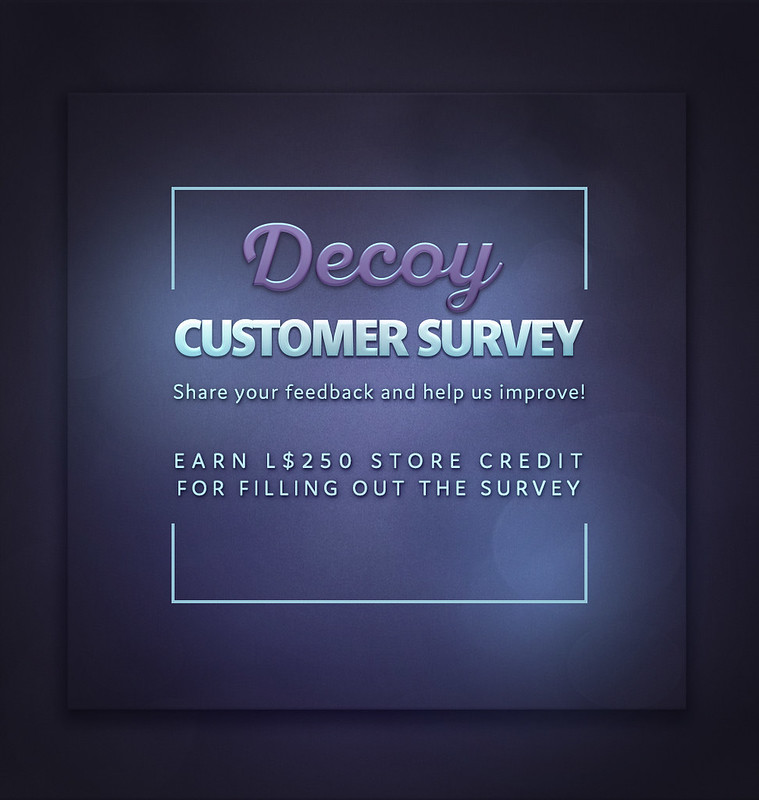 Decoy Customer Survey 2019