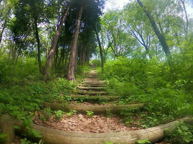 皇鈴山階段