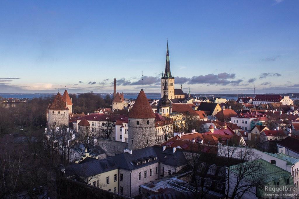 Таллин смотровая Старый город