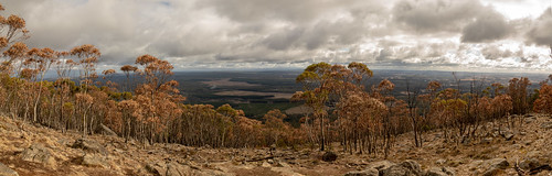 summit mountmacedon autumn australia victoria panorama