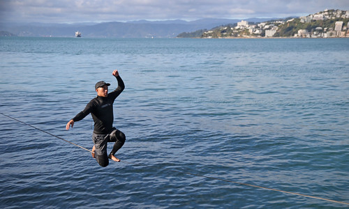 <p>Wellington Harbour</p>