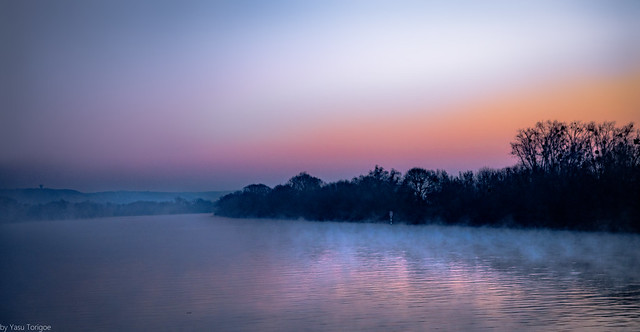 Fog and sunrise along the Seine River near Rouen (between Rouen and Les Andelys), Normandy Region, France-1a