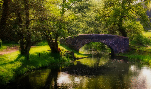 canal water trees bridge neath wales