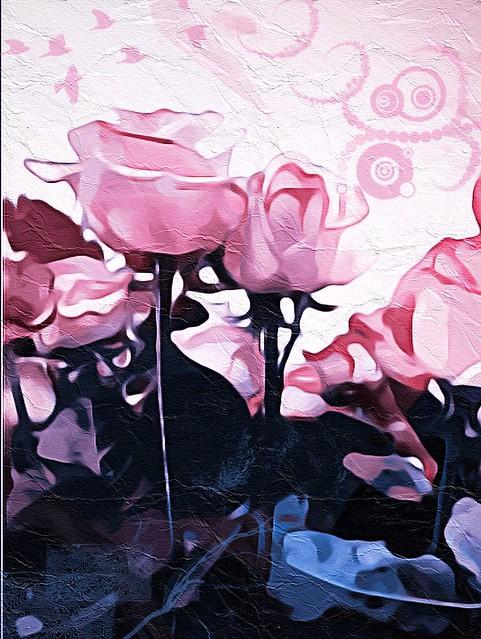 Roses de primavera / Spring roses