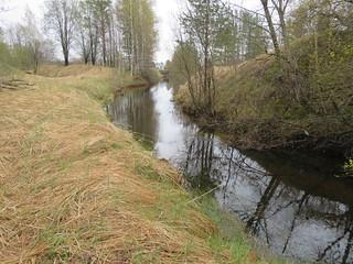 Põlevkivijõgi / River in oil shale in Estonia