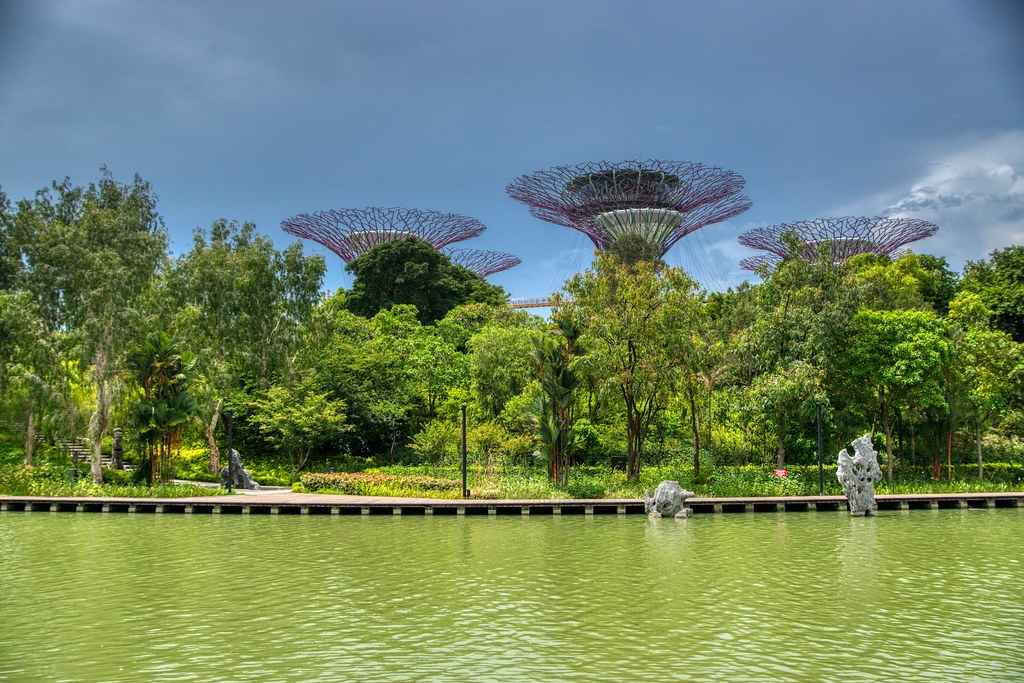 Dragonfly lake and Supertrees in the Gardens by the Bay in Singapore