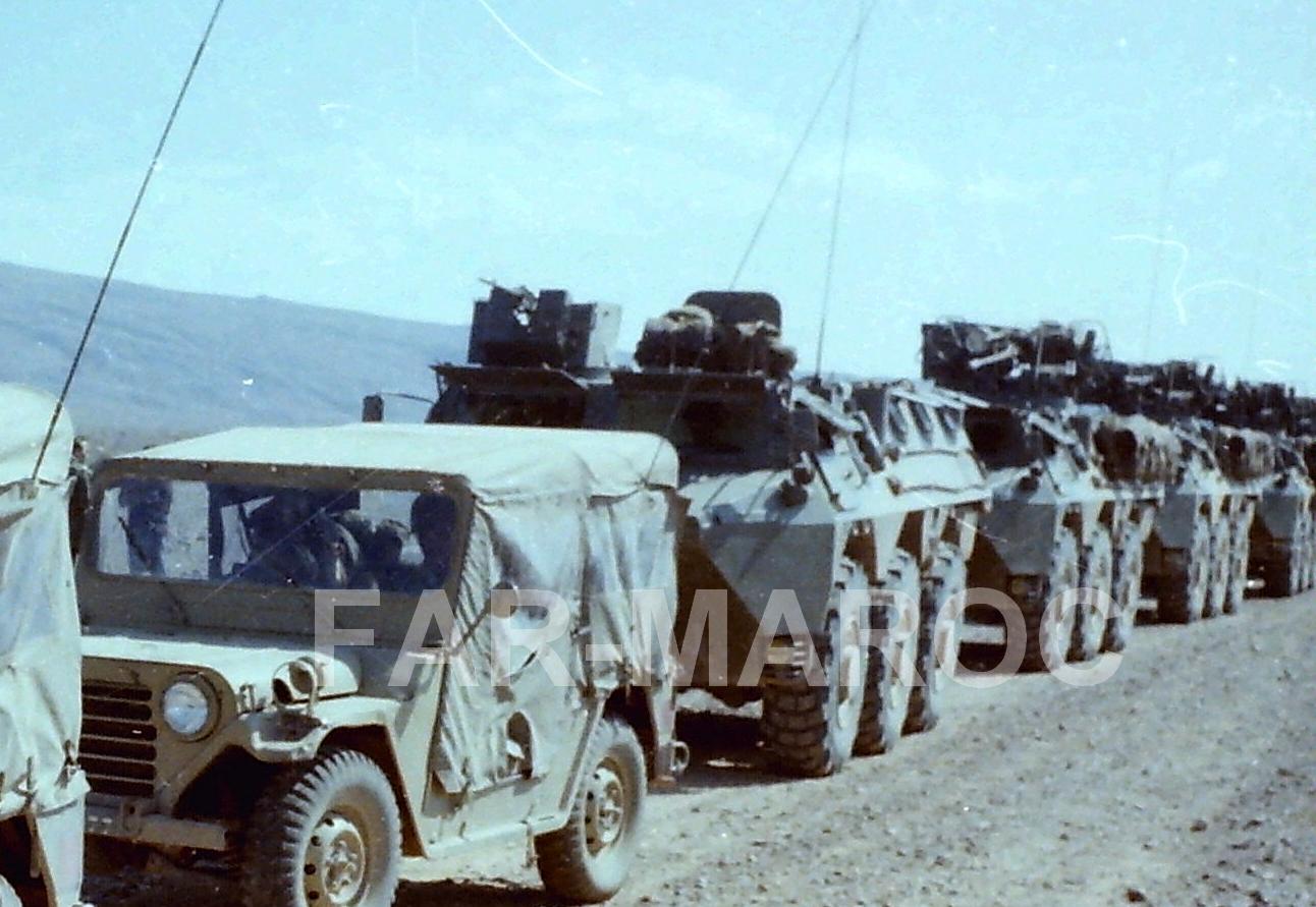 Renault VAB VTT et VCI des Forces Armées Royales 47784825222_9694cddbf8_o
