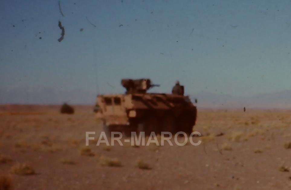Renault VAB VTT et VCI des Forces Armées Royales 47784826512_44f951eb38_o