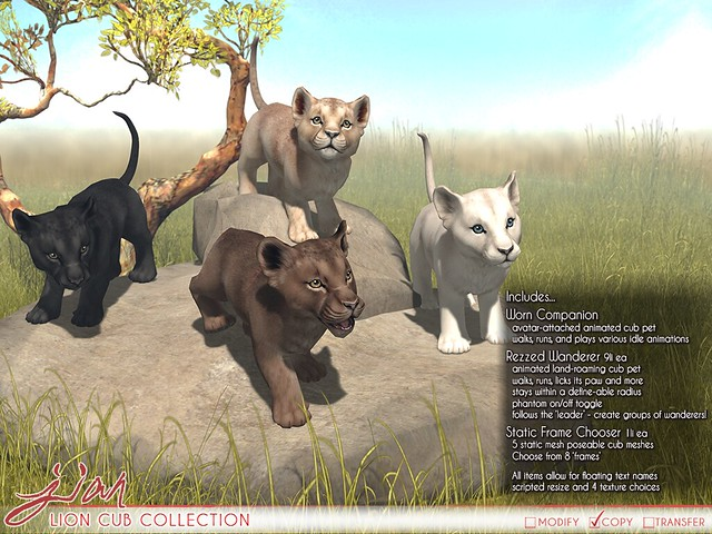 JIAN Lion Cub Collection (Belle. May '19)