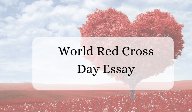 world red cross day essay