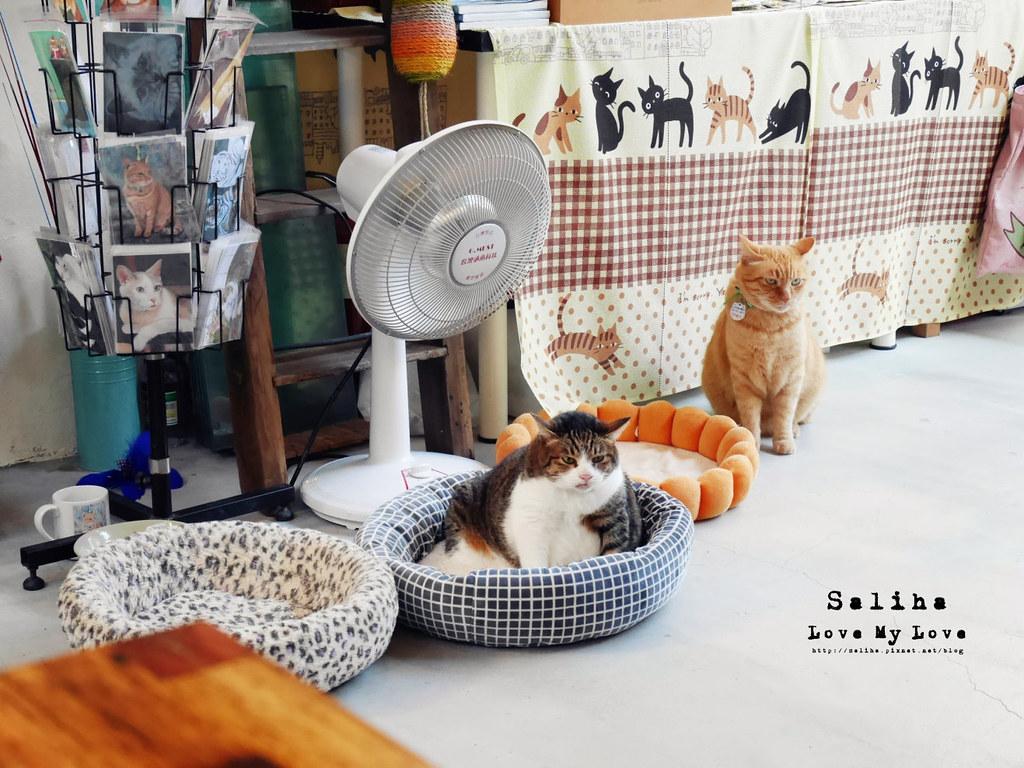 猴硐Empress Gallery Catwalk 219有貓咪咖啡館下午茶 (20)