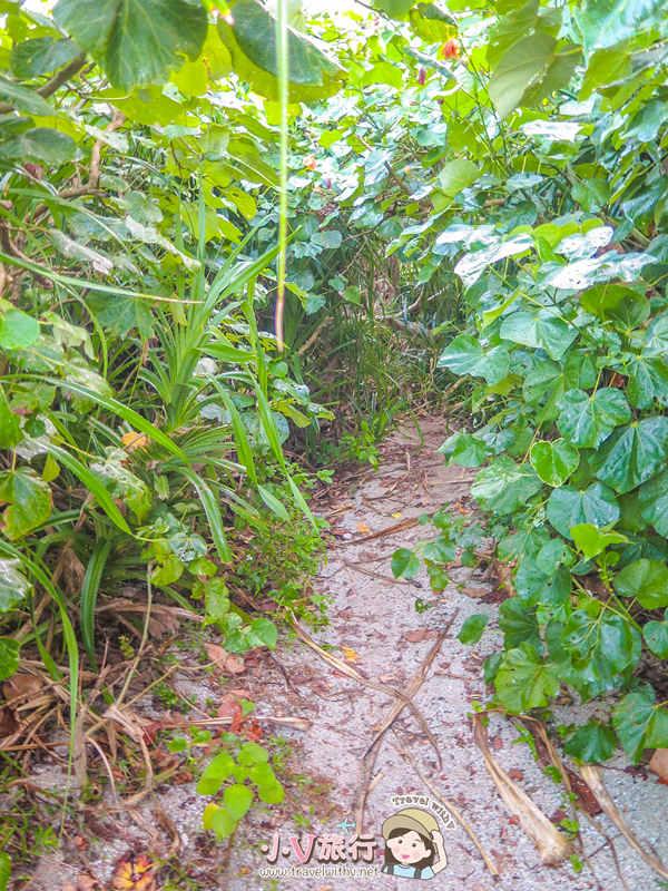 蘭嶼東清部落私房景點 貝殼砂