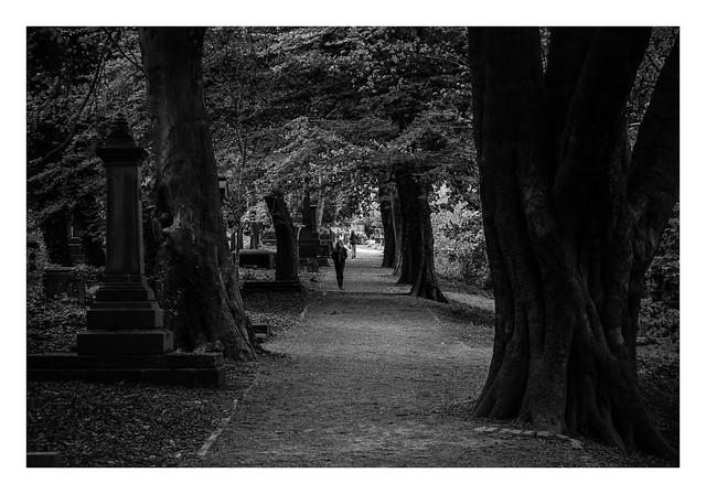 FILM - General Cemetery