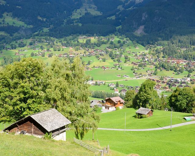 Vistas del valle de Grindelwald desde el tren