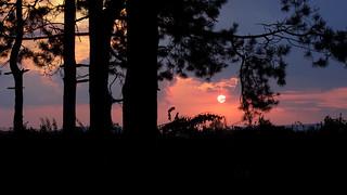 September Sunset | by Millan_1977