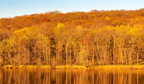 may minnesota saintcroixriver stcroixriver wildriverstatepark wisconsin goldenhour river spring sunset trees northbranch unitedstatesofamerica