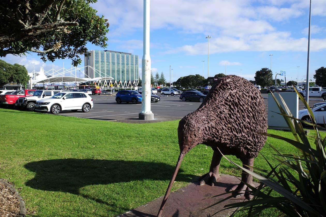 ニュージーランド キーウィ