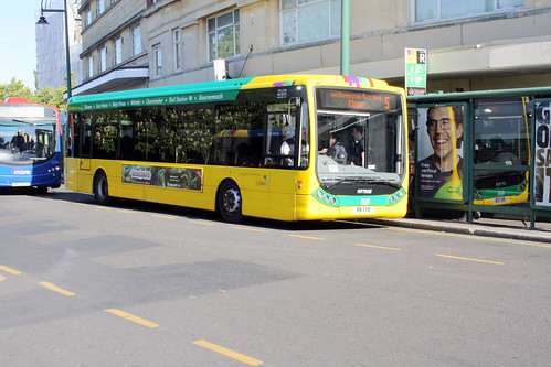 Yellow Buses 8 R8TYB