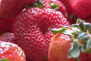 Strawberries | by Vincent1825