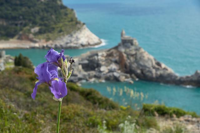 Portovenere - Liguria, Italia