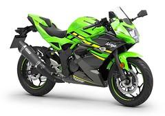 Kawasaki Ninja 125 Performance 2019 - 4