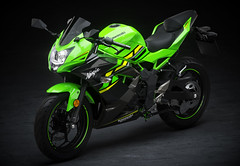 Kawasaki Ninja 125 Performance 2019 - 13