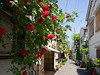 Tokyo alley / alley of rose by kasa51