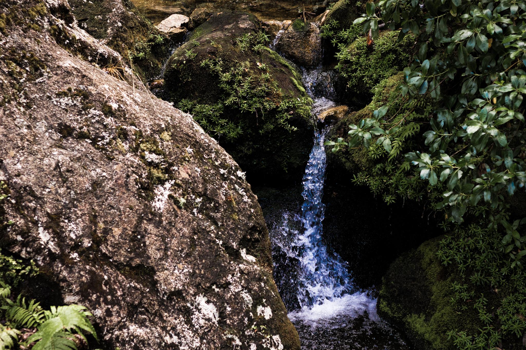 Abel Tasman national park-27