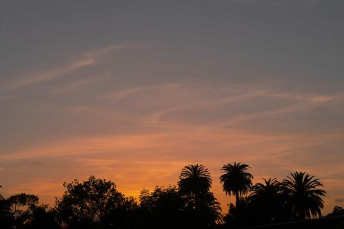 sunset niles