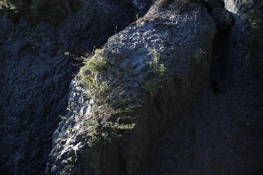 Saltos Petrohue