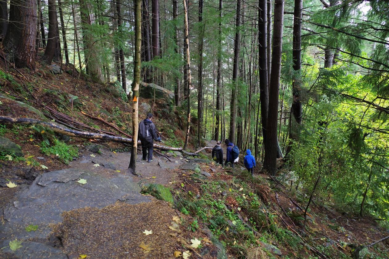 スカイライン登山道