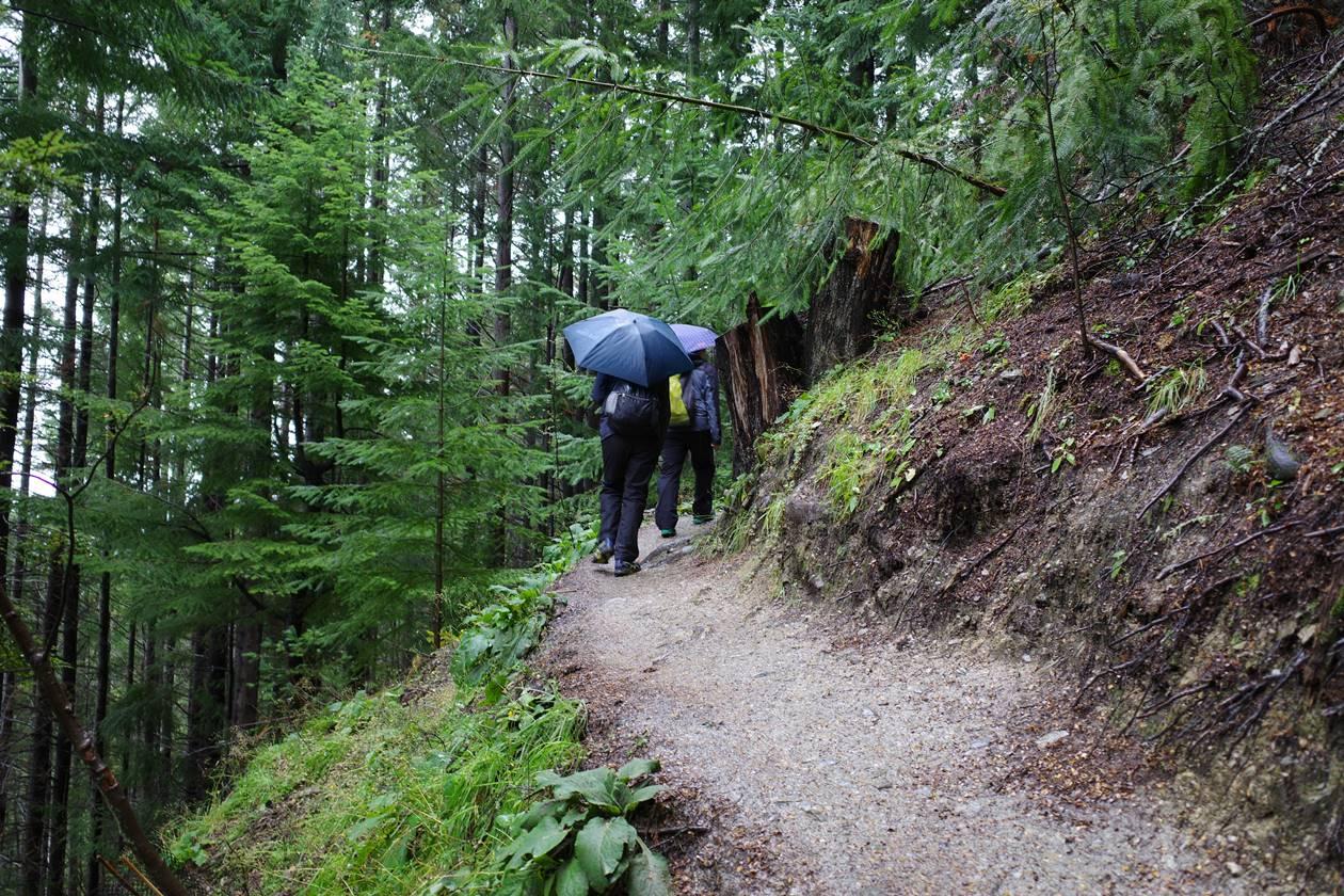 ニュージーランド スカイライン登山道