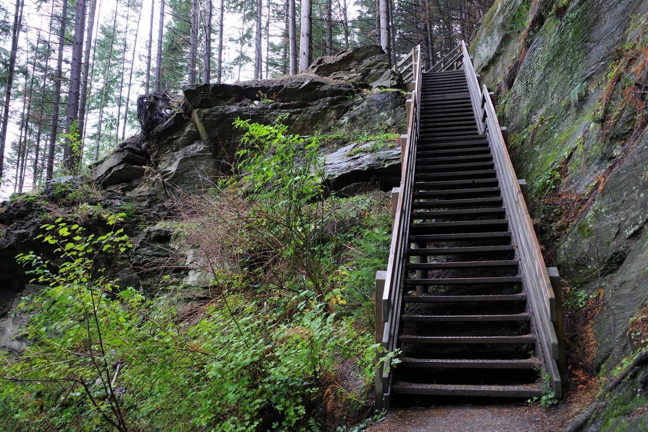 クイーンズタウン スカイライン登山道の階段