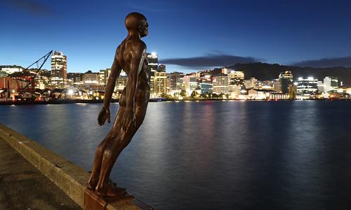 <p>Wellington</p>