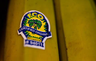 Certified Organic Sticker on Bananas