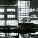 Library at Night, 1964