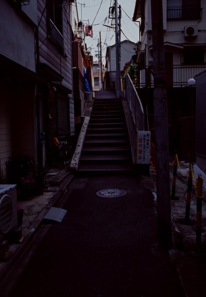 LeicaM6_0517-27